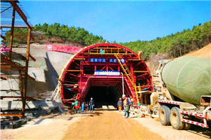 What are the basic types of tunnel linings?